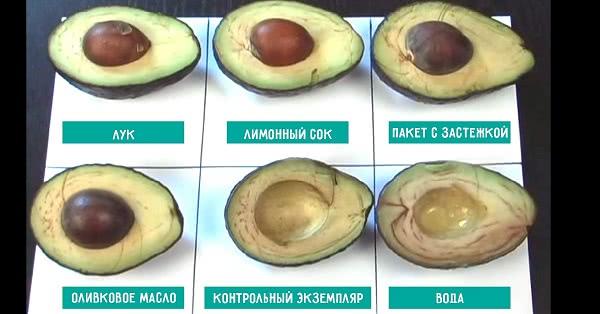 6 способов хранения авокадо. Интересный эксперимент, результаты которого поражают.