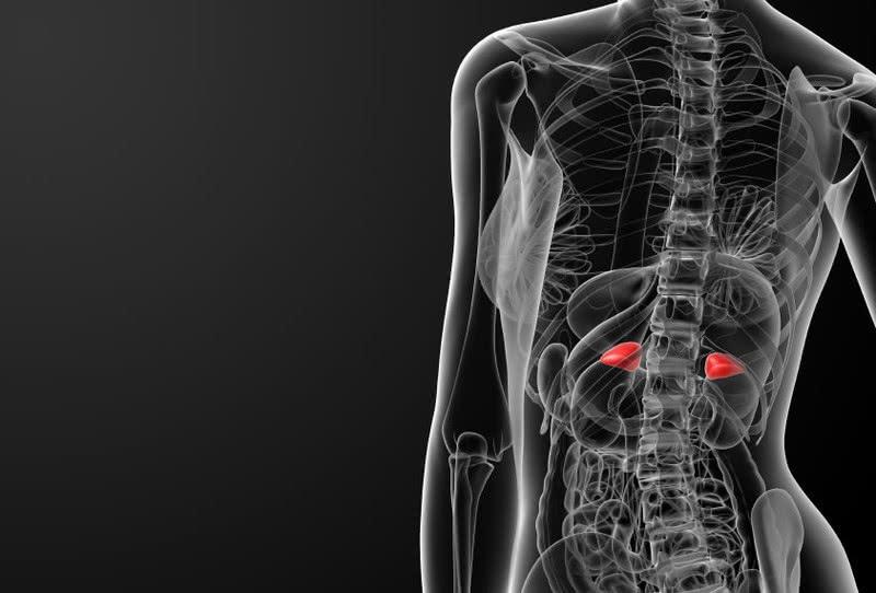 Что происходит в организме, если надпочечники истощены. Так вот откуда проблемы с весом  и головокружение!