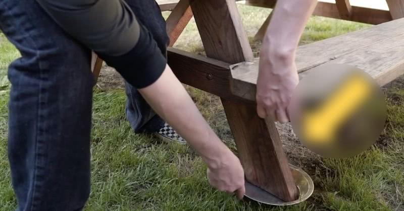 Садовник подставил тарелки под ножки стола, и проблема с насекомыми исчезла сама собой
