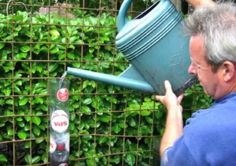 У него было 5 соток земли и большое количество пластиковых бутылок… Увидев его огород, соседи ахнули!