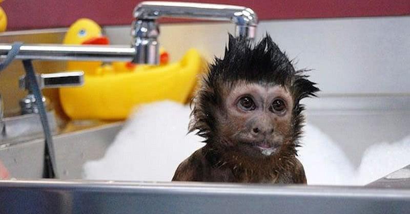 Вот почему нельзя принимать душ слишком часто! Опасность для здоровья…